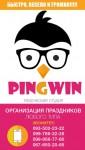 Творческая студия «PinGwin»