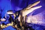 Харьковчан приглашают посмотреть на динозавров подводного мира