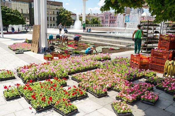 Площадь перед ХНАТОБом украсят 20 тысяч цветов