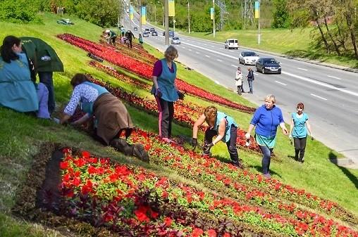 В Харькове высадили более миллиона цветов