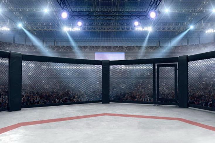 Предстоящие турниры Bellator и UFC