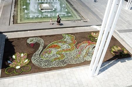 Возле ХНАТОБа появятся лебеди из цветов