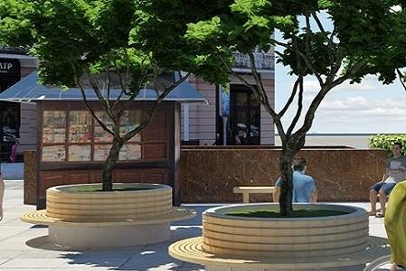 Стало известно, какими будут «оазисы» с деревьями на площади Свободы