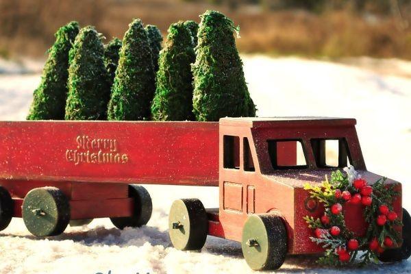 Фельдман Экопарк запускает ёлочный грузовик для сбора новогодних деревьев