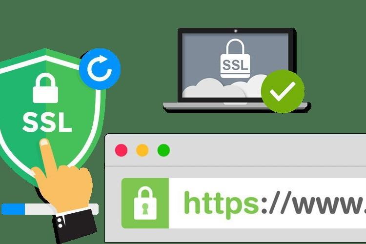 SSL-сертификат сайта: важность проверки