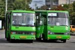 Харьковчане предлагают мэрии отказаться от маршруток