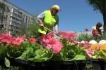 На Салтовке продолжаются работы по благоустройству дворов
