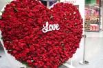В Харькове создадут рекордную цветочную валентинку