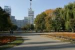 Харьков вошел в число самых криминальных городов мира