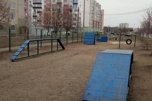 В Харькове оборудовали 37 площадок для выгула собак